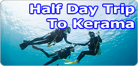 Half Day Snorkeling and Introductory Diving to CHIBISI (Kerama Islands)